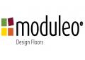 MODULEO (IVC)