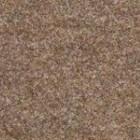 Ковровое покрытие Ideal TURBO 1081